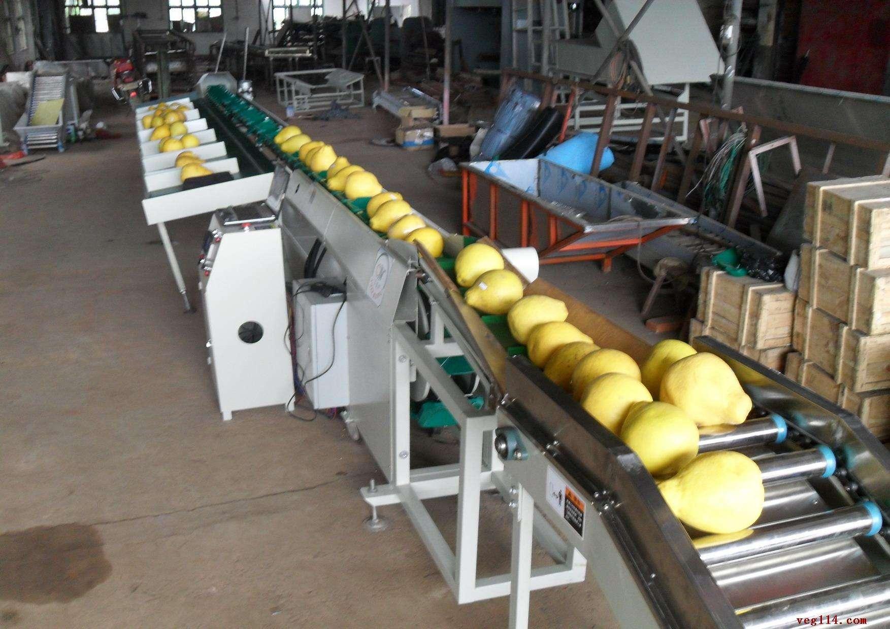 柚子重量分选机